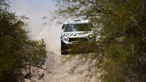 Mikko Hirvonen hade inga problem under sitt första Dakarrally.