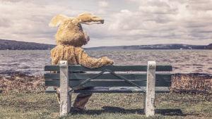 En människa som är utklädd till en kanin sitter på en bänk och tittar ut över havet.