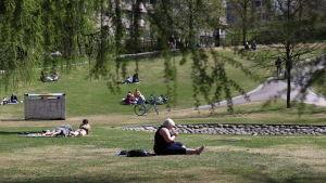 Människor njuter i solen i Sinebrychoffparken.