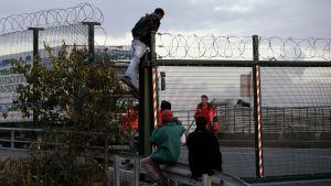 Flyktingar försöker ta sig till Storbritannien via kanaltunneln.  Calais, Frankrike.
