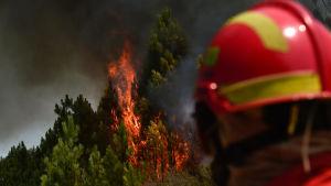 En brandman ser ut över en skogsbrand i Castelo, i Mação 26.7.2017.