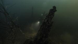 Undervattensbild på skeppsvraket Blekinge som påträffats utanför Karlskrona i Sverige.