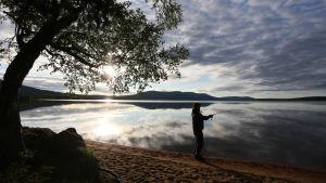 Mikko Peltola kalastaa Pallasjärven rannalla