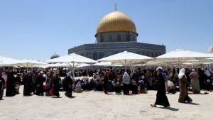 Aqsa-moskén i Jerusalem.