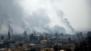 Hårda strider rasar i västra Mosul som bäst. Östra Mosul som ligger på andra sidan om floden Tigris befriades i början av året