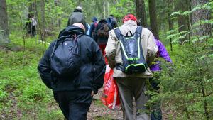 Skogsterapi i Sibbo storskog