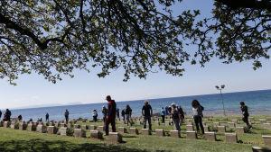 Begravningplats på Gallipolihalvön i Turkiet där nyzeeländska och australiska soldater som dog i slaget på Gallipoli är begravda