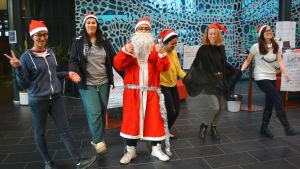 jultomten och vänner
