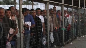Palestinska män köar vid gränskontrollen Eyal Check för att komma in i Israel för att arbeta  ad