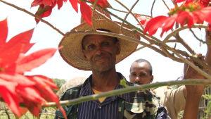 etiopisk bonde