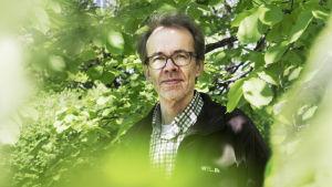 Professori Heikki Setälä, Helsingin yliopisto
