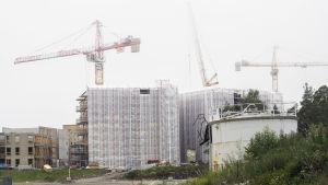 Oljecistern, med bygge och lyftkranar i bakgrunden vid Kronbergstranden.