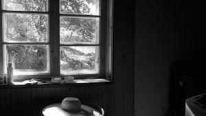 Näkymä saunan sisältä ja ikkunassa maisema