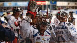 Tappara firar under matchen mot Kärpät.