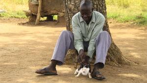 man krafsar katt i norra uganda