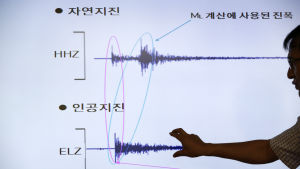 Sydkoreansk seismograf efter ett misstänkt kärnvapenprov i Nordkorea.