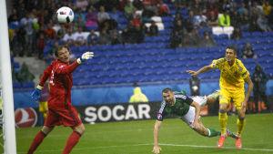Gareth McAuley nickar in segermålet mot Ukraina.
