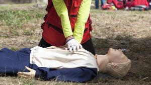En person visar hur man ger hjärtmassage på en docka som ligger på marken.