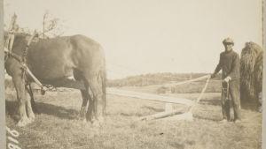 kehäaura ja mahaies Karjaan Mjölnarsissa