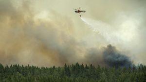 Släckningsarbete över Gammelby där en stor skogsbrand härjar.