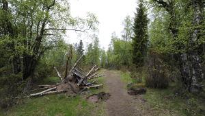 Bråta och gropar i stigen på väg ut till sommarstugor på Hanhikivi
