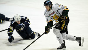 Ville Meskanen gjorde ett av målen när hans Ilves slog HPK i A-juniorernas avgörande semifinal. Nu väntar, precis som på bilden, Esbolaget Blues i finalen.
