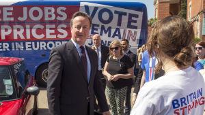 Toryledaren David Cameron vil valtillställning för bremain