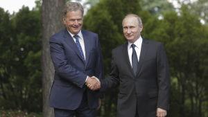 President Sauli Niinistö skakar hand med Rysslands president Vladimir Putin i Gullranda den 1.7.2016.