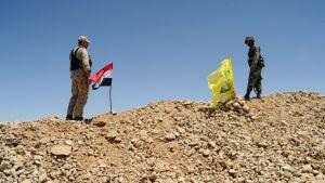 Syrisk soldat vid den syrisk-libanesiska gränsen 6.6.2015.