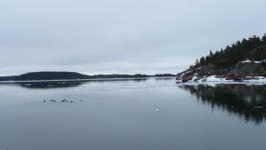 Skärgårdshavet på vårvintern, öppet hav med några isflak.
