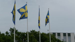 Flaggor med Kimitoöns vapen.