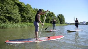 Stand up paddling i Tölöviken.