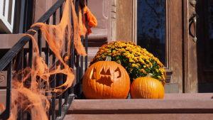 Halloweendekorationer i Brooklyn
