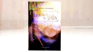 Boken En skärva av själen