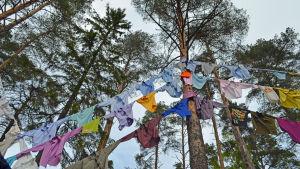 Här hänger Martti Ahtisaaris rosa skjorta.