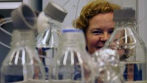 Marina Heinonen, professor i livsmedelssäkerhet Helsingfors universitet