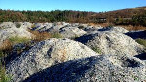 Glashögar av krossat glas som ska bli grund för ett område för kompostjord vid Stormossen.