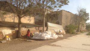 Flyktingar på förläggningen Eleonas i Aten, Grekland