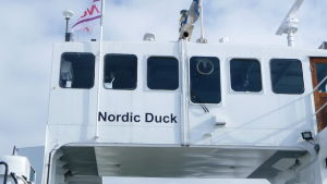 Nordic Duck
