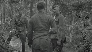 Eversti Adolf Ehrnrooth (vas.) ja everstiluutnantti Wolf Halsti Vuosalmella 24. heinäkuuta 1944.