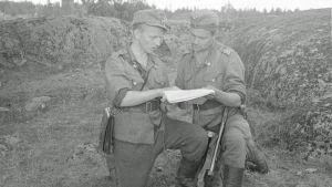Vänrikki Puhakka ja ylikersantti Paavo Kasper Vuosalmella elokuussa 1944.