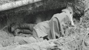 Miehiä levolla poterossa noin 10 metriä etulinjan takana Vuosalmella heinäkuussa 1944.