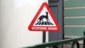 Skylt i Eremigaget som varnar för katter