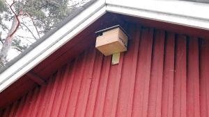 linnunpönttö rakennuksessa