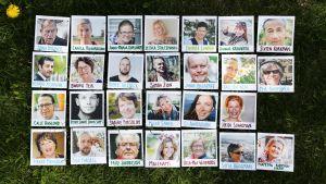 Polaroidbilder i gräset.