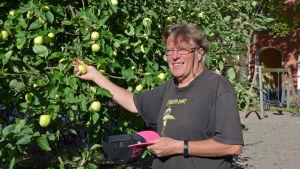 Harri Ahola kan plocka äpplen på sin hemgård