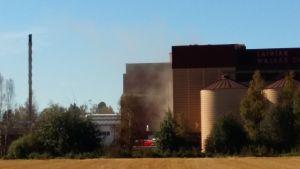 Brand vid maltfabriken i Laihela 13.9.2016