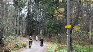 skog där mänskor går och cyklar på en naturstig