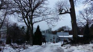 Åbo universitets botaniska trädgård på Runsala i snöskrud.