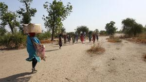 Människor i Sydsudan får hjälp av hjälporganisationen Läkare utan gränser.